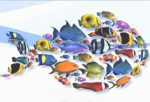 ماهی گروهی متفاوت اما هماهنگ