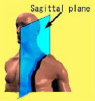 سطح ساجیتال (سهمی) sagittal
