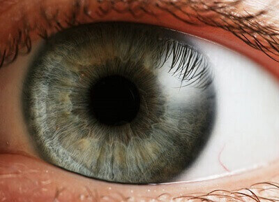 تعیین بیماری با دیدن چشم