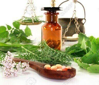 انواع گیاهان دارویی موجود در ایران