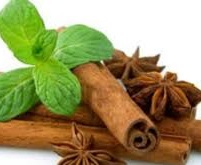 استفاده خودسرانه داروهای گیاهی