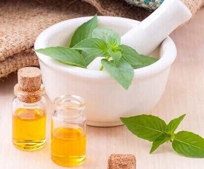 داروی گیاهی اكیناسه درمان سرماخوردگی